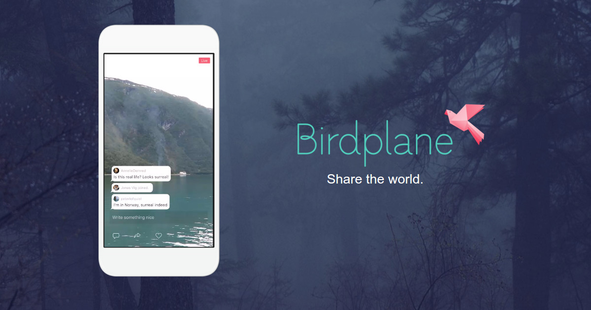 Birdplane website